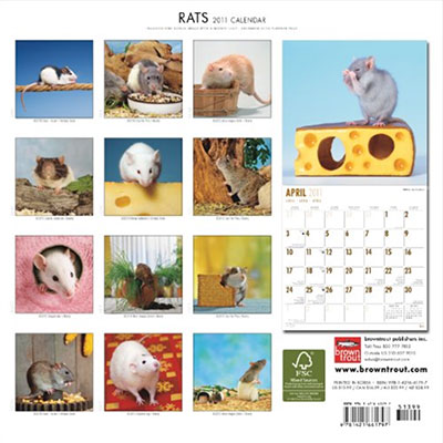 2011 Rat Calendar by Brown Trout publishing.