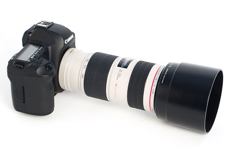 Canon 70-200 f/4 L lens mounted on a 5D mark II body.