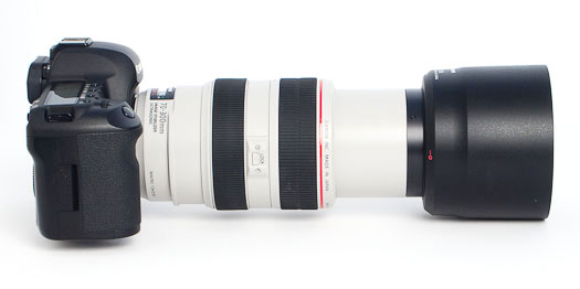 The Canon 70-300L lens extends outward as one zooms to 300mm focal length.