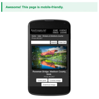 Passing Google's mobile friendly test.