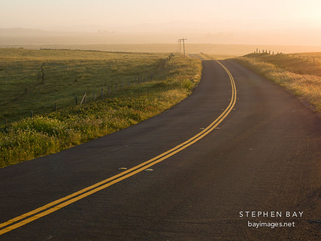 Curving road in the early morning mist. Point Reyes, California.