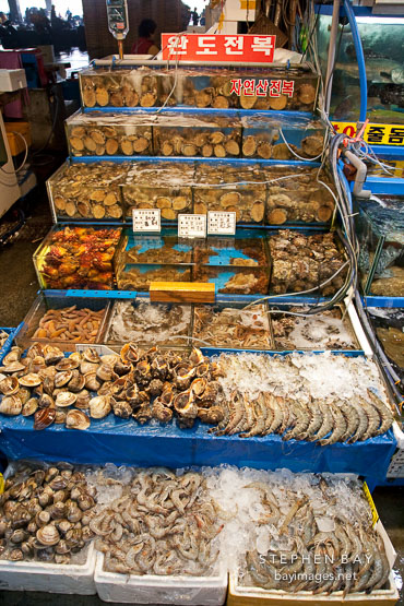 Shellfish and mollusks at the Noryangjin fish market in Seoul.