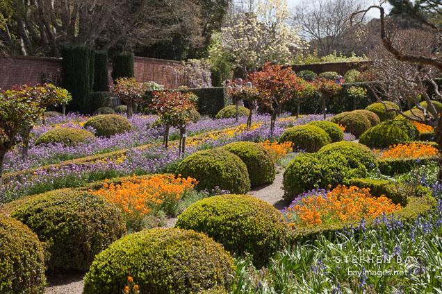 Photo Chartres Garden