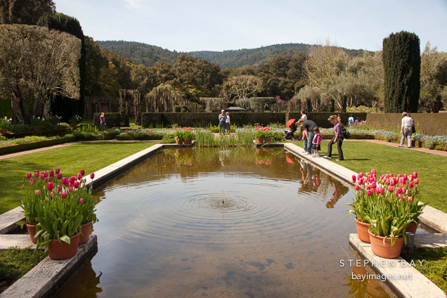 Photo pool in the sunken garden filoli gardens california for Filoli garden pool