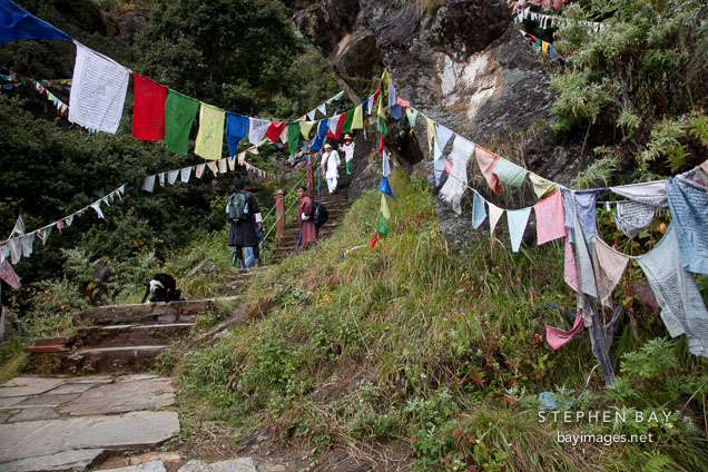Steps on the path to the Tiger's Nest monastery. Paro, Bhutan.