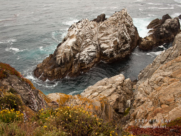 Small rocky island at the north shore of  Point Lobos. California.