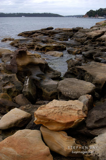 Rocky shore near Mrs. Macquaries point. Sydney, Australia.