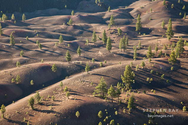 Painted Dunes at dawn. Lassen NP, California.