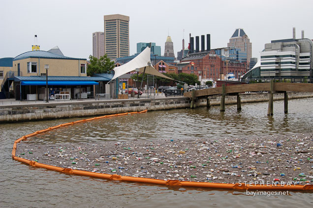 Garbage in the Inner Harbor. Baltimore, Maryland, USA.