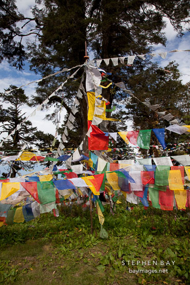 Prayer flags. Dochu La, Bhutan.