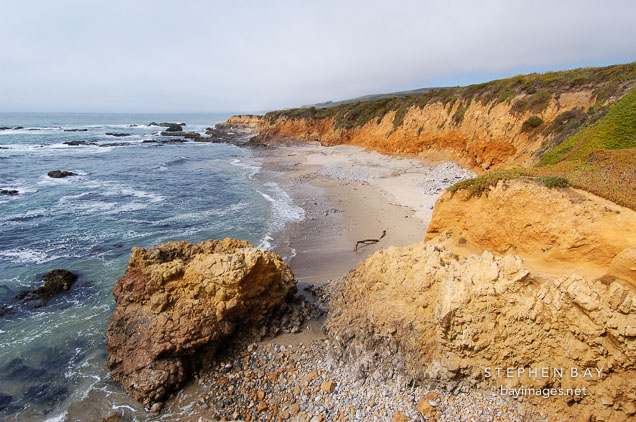 Shoreline at Pescadero state beach, California, USA.