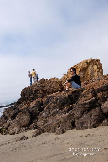 Pescadero state beach, California, USA.