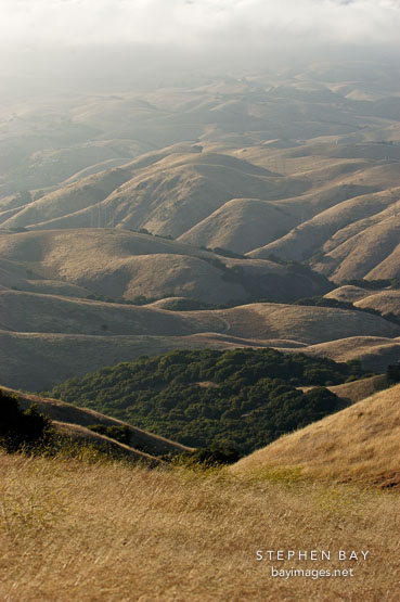 Mission Peak, Fremont, California, USA.