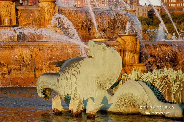 Seahorse. Buckingham Fountain, Chicago, Illinois, USA.