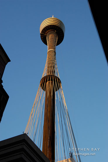 Sydney tower (AMP tower), late afternoon. Sydney, Australia.