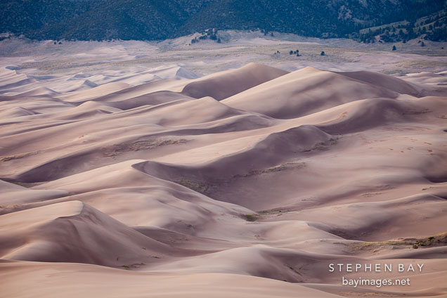 Dune field. Great Sand Dunes NP, Colorado.