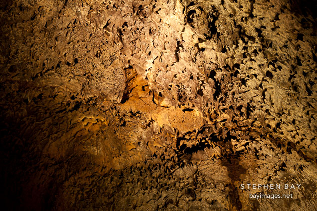 Cave ceiling with lavacicles. Mushpot Cave, Lava Beds NM, California.