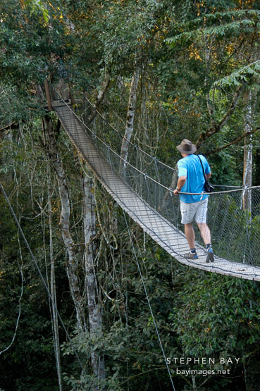 Walking a jungle canopy bridge. Amazon Peru & Photo: Walking a jungle canopy bridge. Amazon Peru