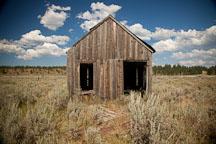 Abandoned shed. Whitney, Oregon. - Photo #27800