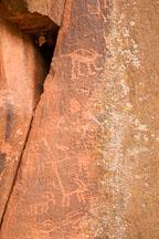 Ringtail-like petroglyph figure. V-Bar-V Ranch, Arizona, USA. - Photo #17800