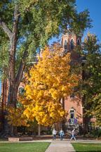Norlin quadrangle, CU Boulder. - Photo #33111