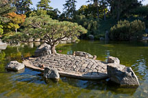 Pond in Japanese Friendship Garden. San Jose, California. - Photo #16911
