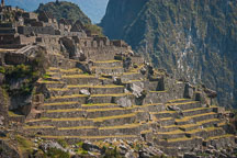 Terraces at Machu Picchu. Peru. - Photo #10121