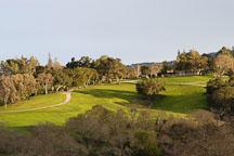 Arastradero Preserve. Palo Alto, California, USA. - Photo #2912
