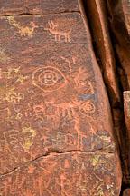 Petroglyphs of multiple animals including elk. V-bar-V Ranch, Arizona, USA. - Photo #17813