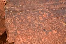 Dense section of petroglyphs. V-Bar-V Ranch, Arizona, USA. - Photo #17814