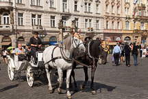 Carriage ride in Prague, Czech Republic. - Photo #30215