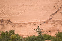 Pictograph on canyon wall at Antelope House Ruin. Canyon de Chelly NM, Arizona. - Photo #18115