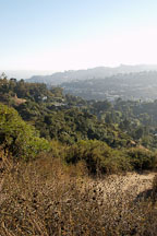 Runyon Canyon Park. Los Angeles, California, USA. - Photo #7215