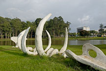 Whale bone artwork. Ballena. La Sabana Park, San Jose, Costa Rica. - Photo #14316