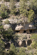 Cliff dwelling on the canyon wall. Walnut Canyon, Arizona. - Photo #17916