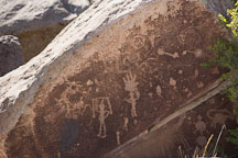 Petroglyph of human figures at Puerco Pueblo. Petrified Forest, Arizona. - Photo #18016