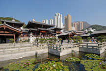 Lily garden. Chi Lin Nunnery. Hong Kong. - Photo #15888