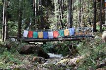 Bridge crossing a small stream. Paro valley, Bhutan. - Photo #24317