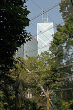 Skyscrapers seen through the canopy and steel mesh of the Edward Youde Aviary. Hong Kong, China. - Photo #16478
