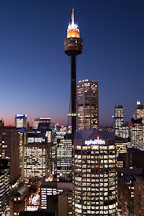 Sydney Tower (AMP Tower) at night. Sydney, Australia. - Photo #1418