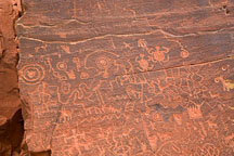 Dense section of petroglyphs. V-Bar-V Ranch, Arizona, USA. - Photo #17814
