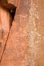 Ringtail-like petroglyph figure. V-Bar-V Ranch, Arizona, USA. - Photo #17800