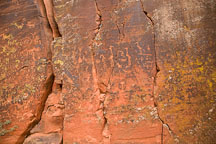 Petroglyphs. V-Bar-V Ranch, Arizona, USA. - Photo #17808