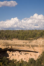 Cliff Palace is protected by an overhanging rock face. Mesa Verde, Colorado. - Photo #18702