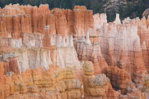 Colorful hoodoos at Bryce Canyon NP, Utah. - Photo #18959
