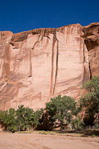 Desert varnish on the canyon walls. Canyon del Muerto, Arizona. - Photo #18114
