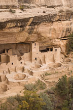 Kivas and a four story tower. Cliff Palace, Mesa Verde, Colorado. - Photo #18557