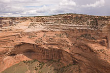 Mummy cave ruin is located on the cliff walls of Canyon del Muerto. Canyon de Chelly NM, Arizona. - Photo #18392