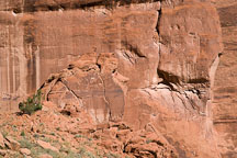 Sandstone rock weathered to look like a face. Canyon del Muerto, Canyon de Chelly NM, Arizona. - Photo #18160