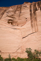 The walls of Canyon de Chelly reach over 800 feet in height. Canyon de Chelly NM, Arizona. - Photo #18141
